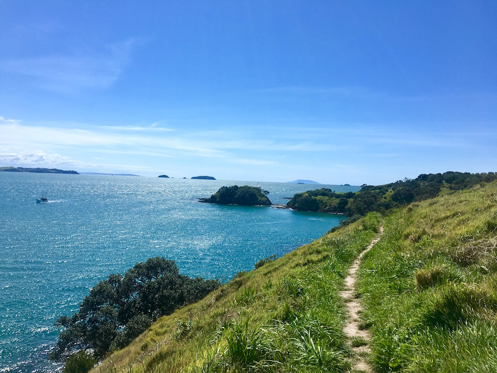 path going to the beach on Waiheke Island off the coast of Auckland, New Zealand