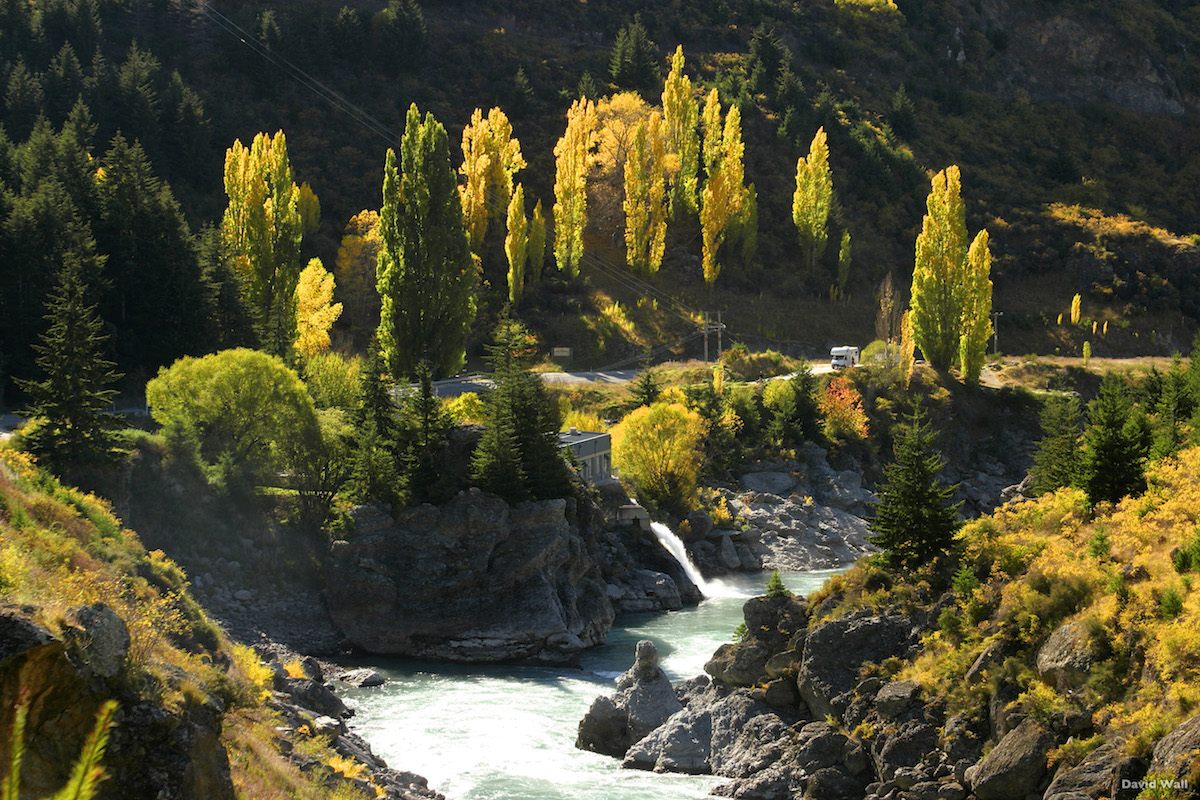 Autumn colors on the south island of new zealand at Kawarau Gorge