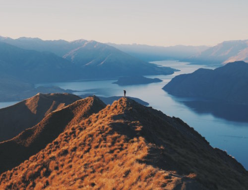 When is the Best Time to Visit New Zealand?